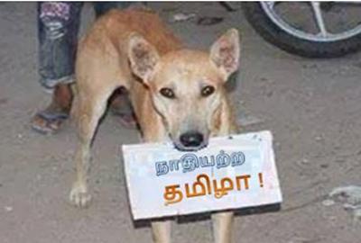 nathiyadra tamilan